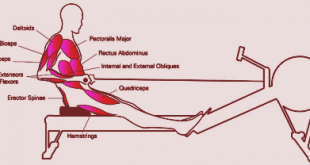 benefits of rowing machine