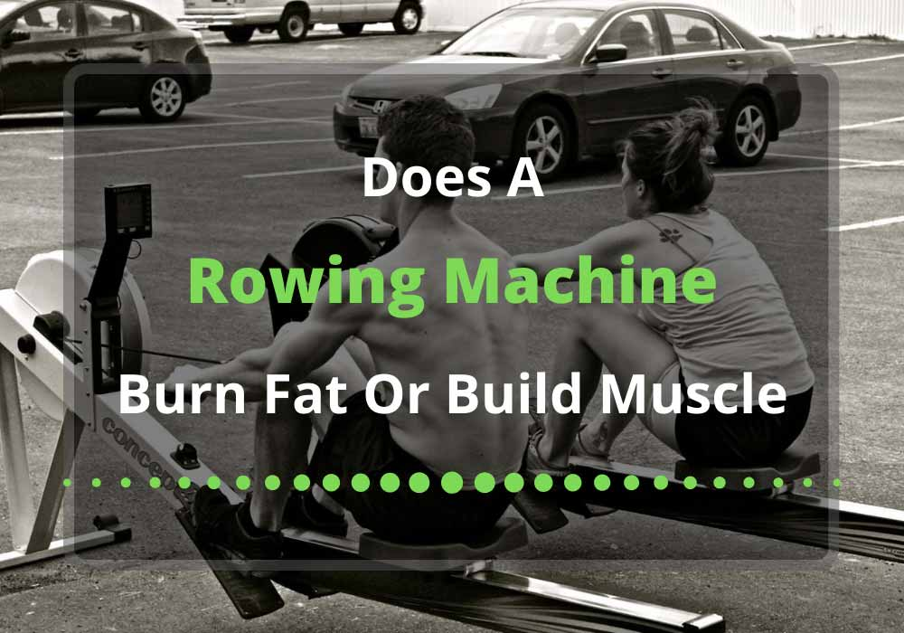 does a rowing machine burn fat or build muscle